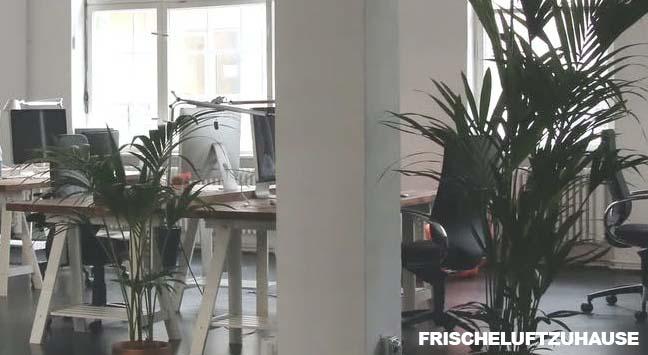 Luftbefeuchter für's Büro