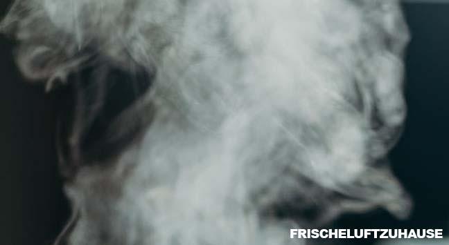 Luftbefeuchter Verdampfer